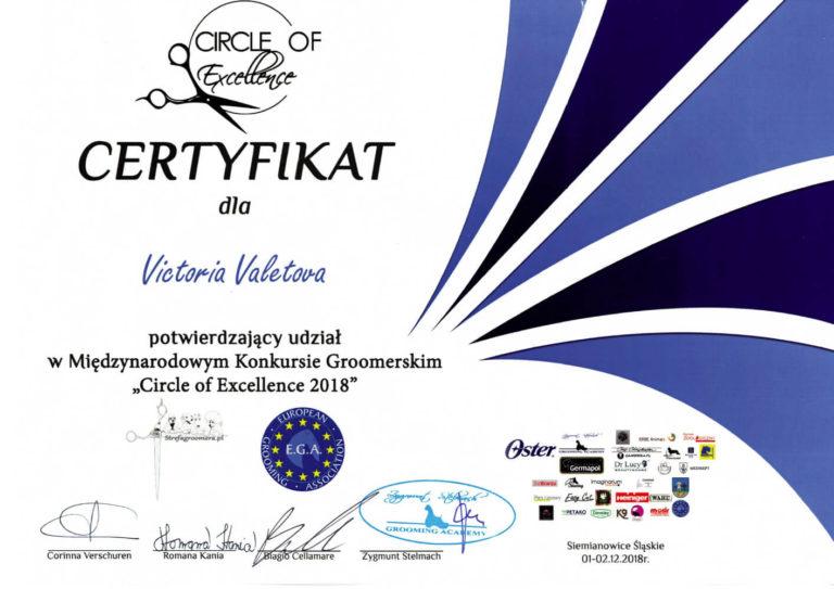 Dyplom-Victoria-11