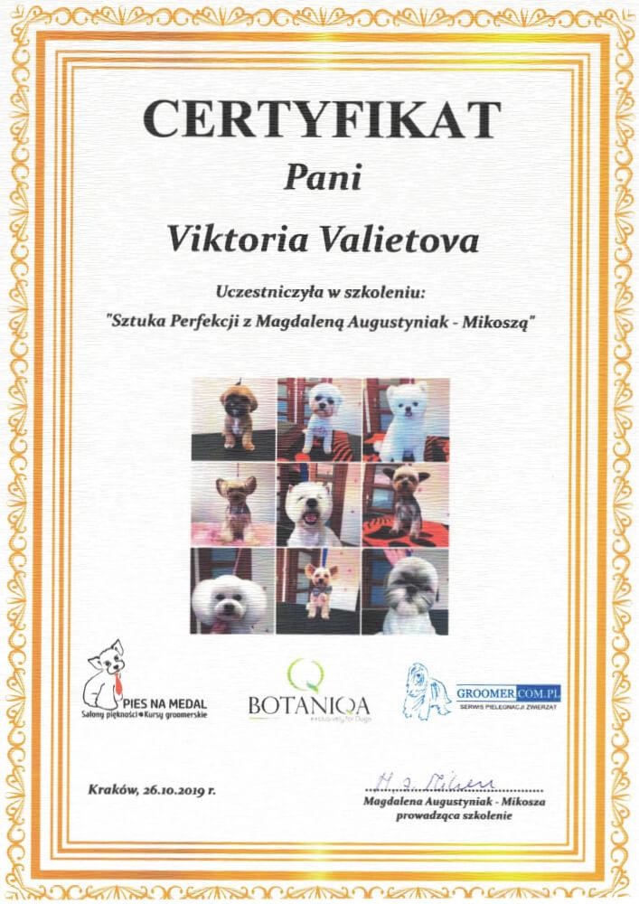 Dyplom-Victoria-7