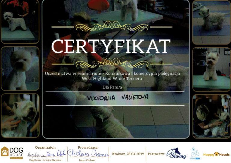 Dyplom-Victoria-9